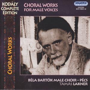 Béla Bartók Male Choir - Pécs 歌手頭像