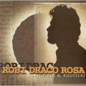 Robi Draco Rosa (羅比羅沙) 歌手頭像