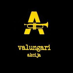 Valungari 歌手頭像