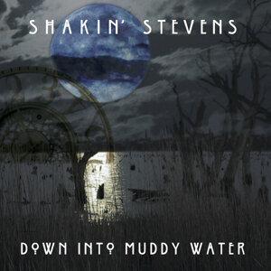 Shakin' Stevens (薛金史帝文生) 歌手頭像