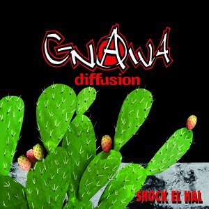 Gnawa Diffusion 歌手頭像