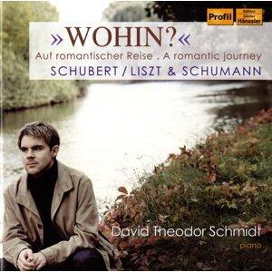 David Theodor Schmidt