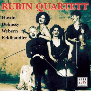 Rubin Quartett 歌手頭像