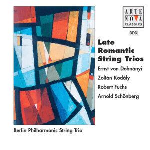 Philharmonisches Streichtrio Berlin 歌手頭像