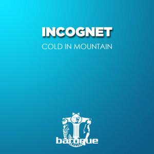Incognet