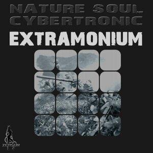 Nature Soul Cybertronic 歌手頭像