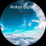 Ankur Biplav