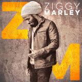 Ziggy Marley (理奇馬利) 歌手頭像