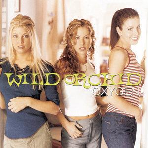 Wild Orchid (野蘭花合唱團) 歌手頭像