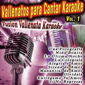 Fusión Vallenata Karaoke 歌手頭像