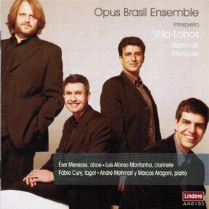 Opus Brasil Ensemble 歌手頭像