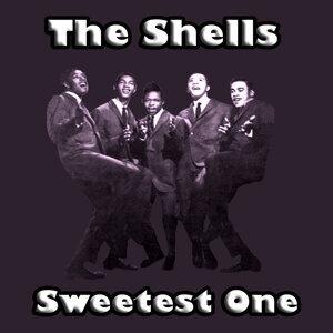 The Shells 歌手頭像