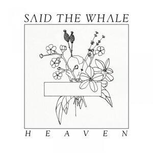 Said the Whale 歌手頭像