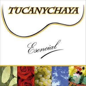 Tucanychaya 歌手頭像