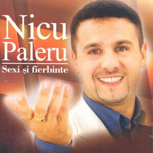Nicu Paleru 歌手頭像