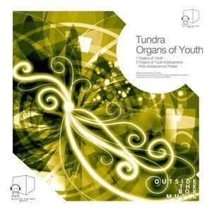 Tundra 歌手頭像