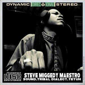 Steve Miggedy Maestro 歌手頭像
