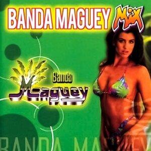 Banda Maguey 歌手頭像