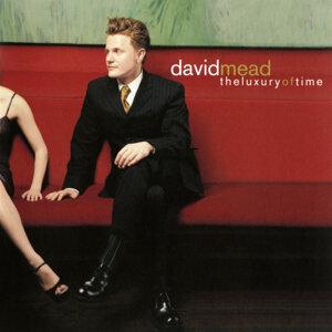 David Mead 歌手頭像