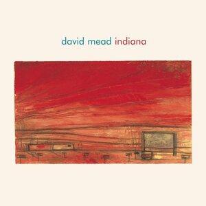 David Mead