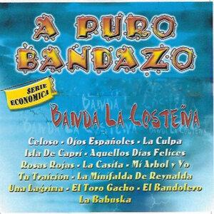 Banda La Costena アーティスト写真