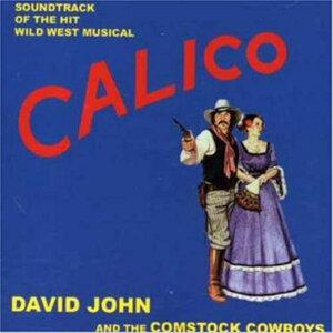 David John and the Comstock Cowboys 歌手頭像