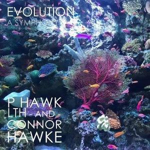 Connor Hawke, P Hawk, Lth 歌手頭像