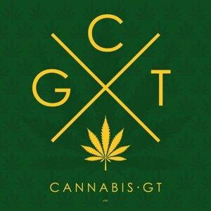 Cannabis GT, Francisco Paez & Arturo Xicay 歌手頭像