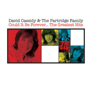David Cassidy & The Partridge Family 歌手頭像