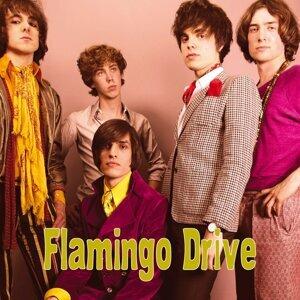 Flamingo Drive