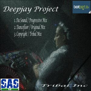 Deepjay Project 歌手頭像