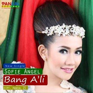 Sofie Angel 歌手頭像