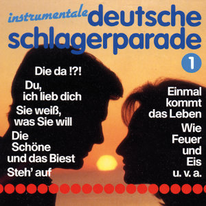 Die Schlager Masters 歌手頭像