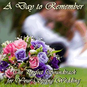 Spring Wedding Maestro 歌手頭像