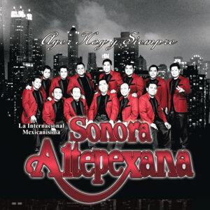 Sonora Altepexana 歌手頭像