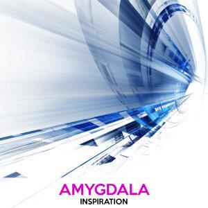 Amygdala 歌手頭像