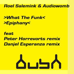Roel Salemink & Audiowomb 歌手頭像