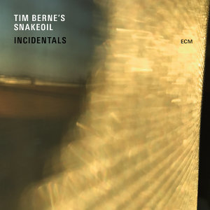 Tim Berne's Snakeoil 歌手頭像