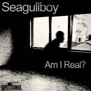 Seagullboy 歌手頭像