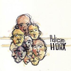 Pelican Hoax 歌手頭像