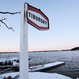Tibursky