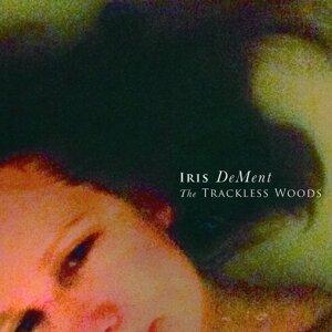 Iris Dement 歌手頭像