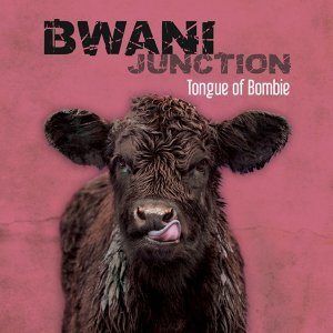Bwani Junction 歌手頭像