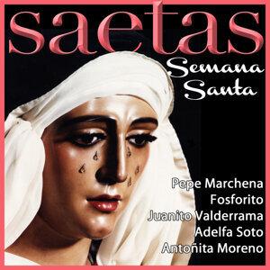 Various Cantaores Flamencos 歌手頭像