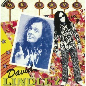David Lindley 歌手頭像
