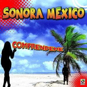 Sonora Mexico 歌手頭像