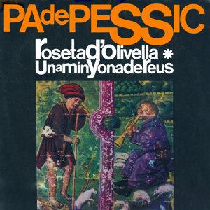 Pa de Pessic 歌手頭像