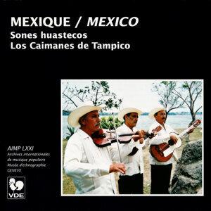 Los Caimanes de Tampico 歌手頭像