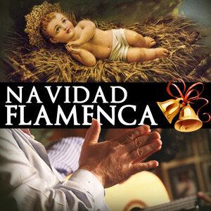 Peña Flamenca Villancicos y a Cantar 歌手頭像