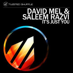 David Mel & Saleem Razvi 歌手頭像